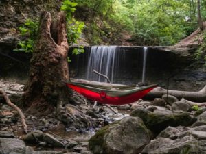 hammock in the woods to get off the ground